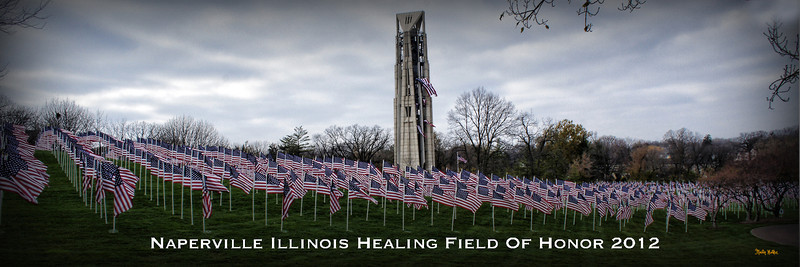 Healing Field of honor.jpg