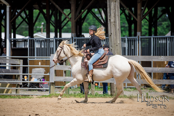 59 Ranch Horse Pleasure