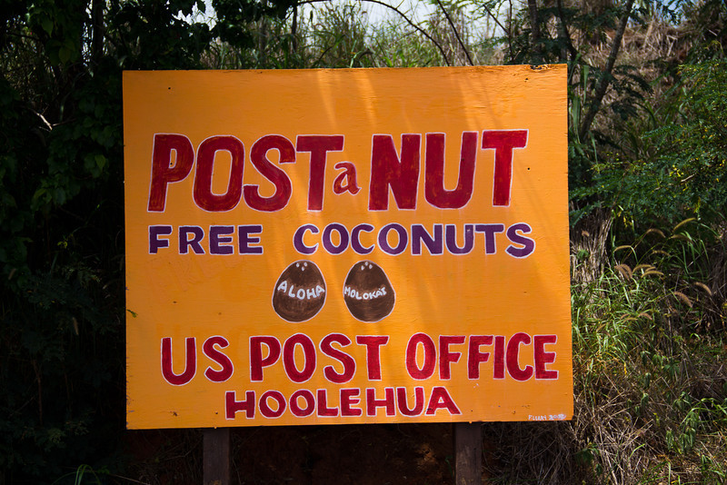 molokai post a nut.jpg