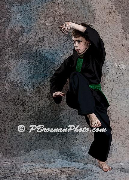 The Karate School - 2012