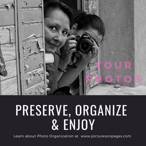 Preserve, Organize and Enjoy #4.png