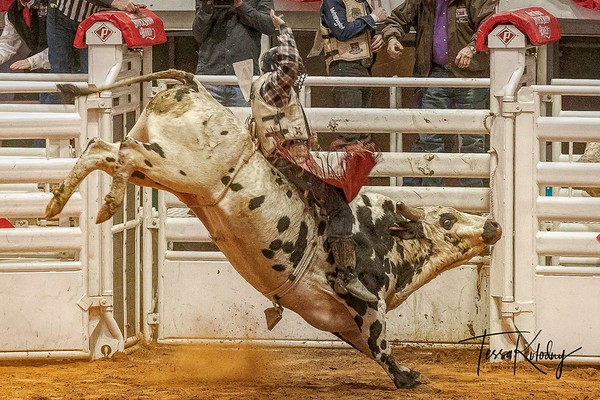 2019 Fort Worth Stock Show Rodeo
