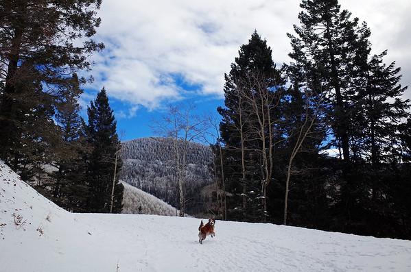 Winter in Santa Fe '16-'17