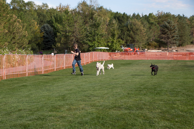 DogDays_Dogs_Gardens_2015_IMG_5422.jpg