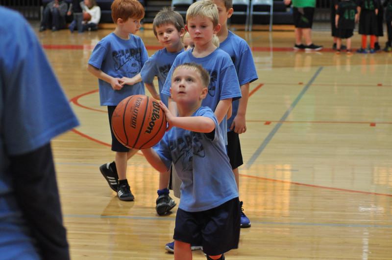 basketball-sharks-koc-0557.jpg