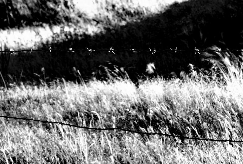 untitled-0474.jpg