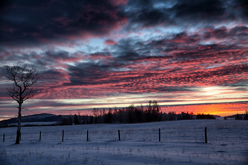 CL_sunrise.jpg