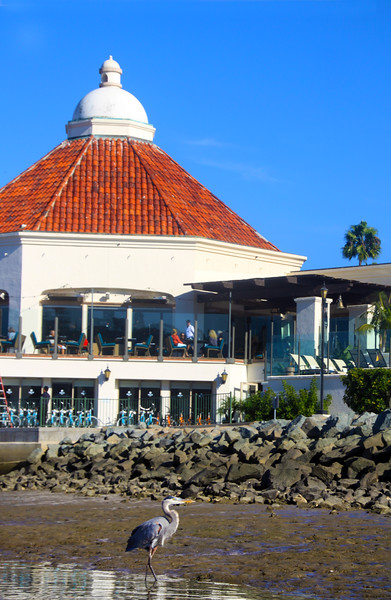 The Historic Kona Kai Resort & Spa