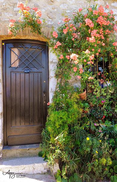 Door8 web.jpg