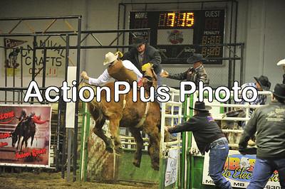 PCCA11 bareback n saddle bronc
