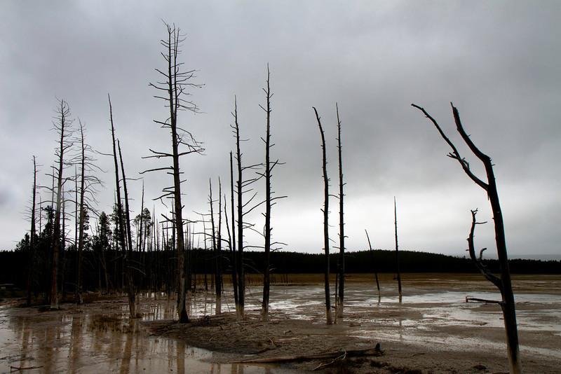 02_Yellowstone National Park_Montana_Wyoming-58.jpg