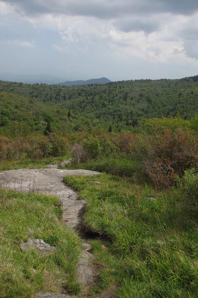 Mountains-to-Sea Trail (5,900')