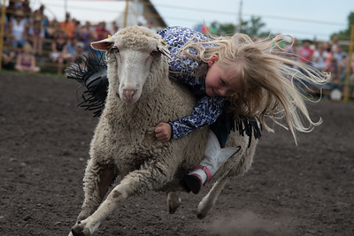Mutton Busting Saturday 2015