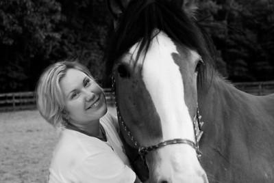Brendas Horses