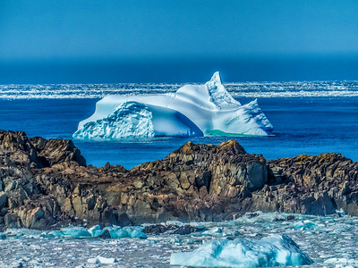 Newfoundland Iceberg Season
