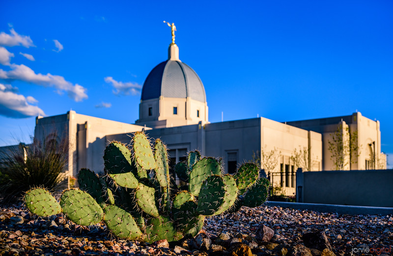 Tucson Arizona Temple_4283.jpg