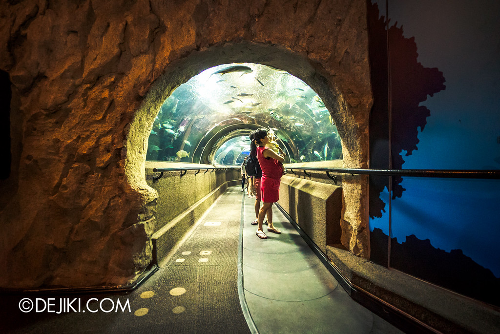 Underwater World Singapore - Tunnel End