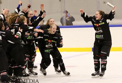Finale Stavanger-Vålerenga