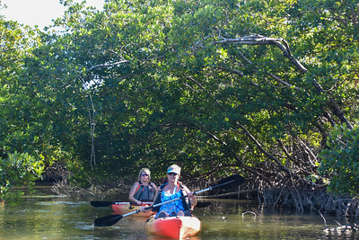 9AM Mangrove Tunnel Kayak Tour - Falish, Liu & Murray