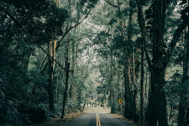 Hawaii20-413.jpg