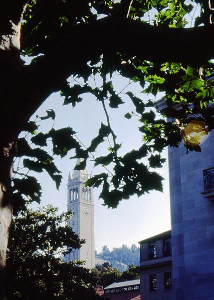 Berkeley, California-The University
