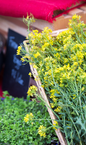 Lucky Leaf Farm brings in their fresh produce, eggs from their North Georgia farm to The Green Market in Piedmont Park in Midtown every Saturday March through December inside the 12th Street and Piedmont Avenue NE park entrance.  Local farmers, cheese, soap makers, King of Pops, chocolate makers, coffee purveyors and vendors line the path into the park.  (Jenni Girtman / Atlanta Event Photography)