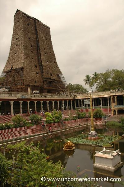 Madurai, India: Meenakshi Reflections