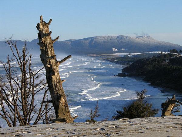 Oregon Coast, March 2006