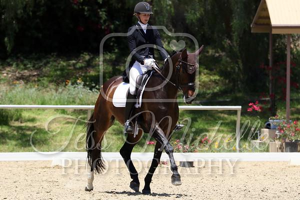 Spirit Equestrian June 2019