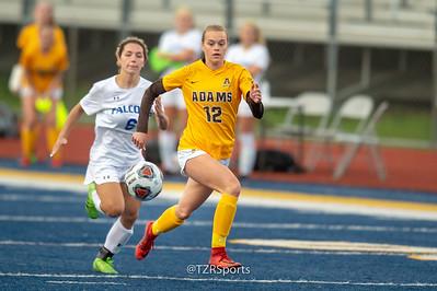High School Soccer - Rochester vs. Rochester Adams 5/28/2019