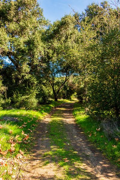 Ronald Caspers Wilderness Park, Orange County, California, United States