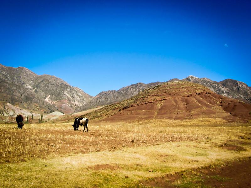 Sucre 201205 Inca Trail Potolo Tour (52f).jpg
