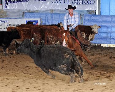 BC 2017 $5K NOV HORSE