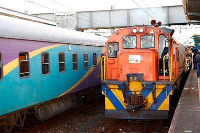 2014 Train Race