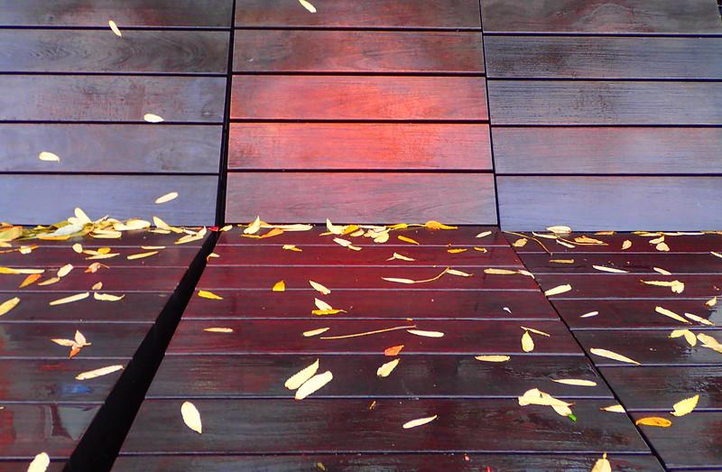 Highline091016_122357_19.jpg