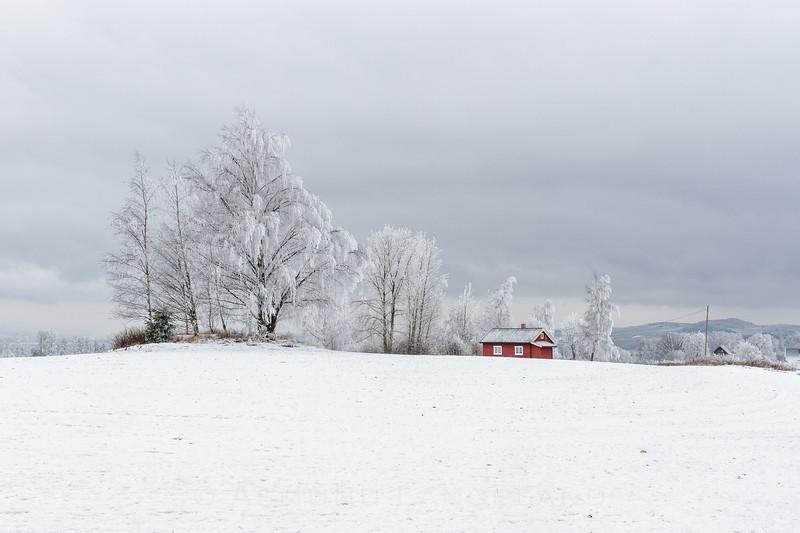 Husmansplass under Heggsvoll, Stange Vestbygd, Hedmark 2017