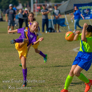 AYSO Soccer Playoffs 11-05-2016