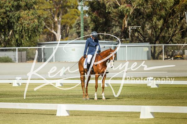 Rider 29