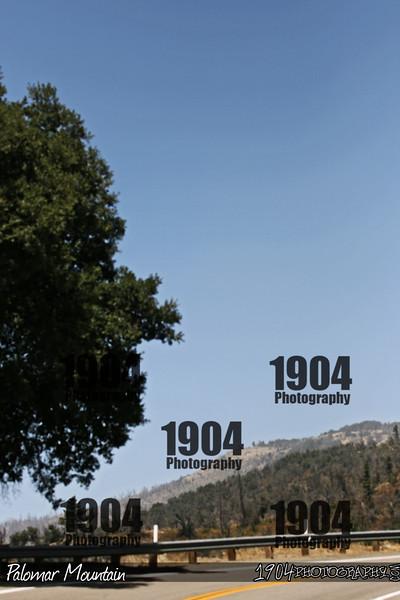 20090906_Palomar Mountain_0933.jpg