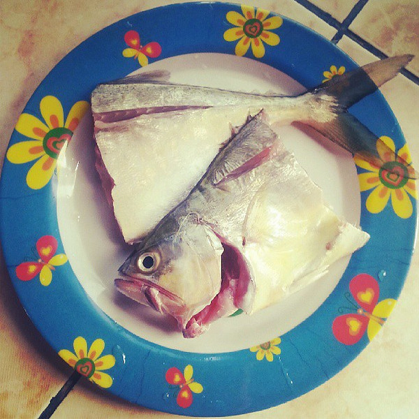 Today_s_lunch_of_basa_was_a_gift_from_a_fisherman_who_caught_it_this_morning..jpg
