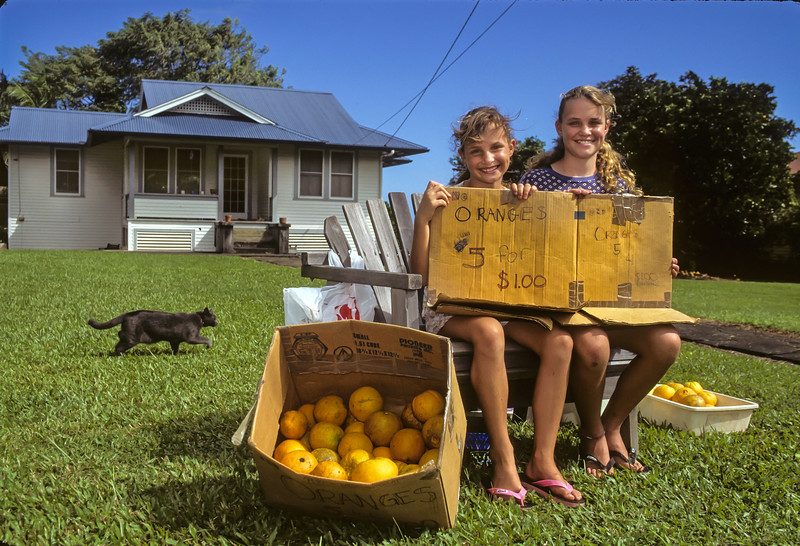 Selling Oranges, Hawaii.