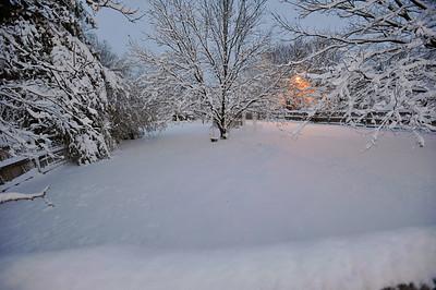 Snowscapes 2009