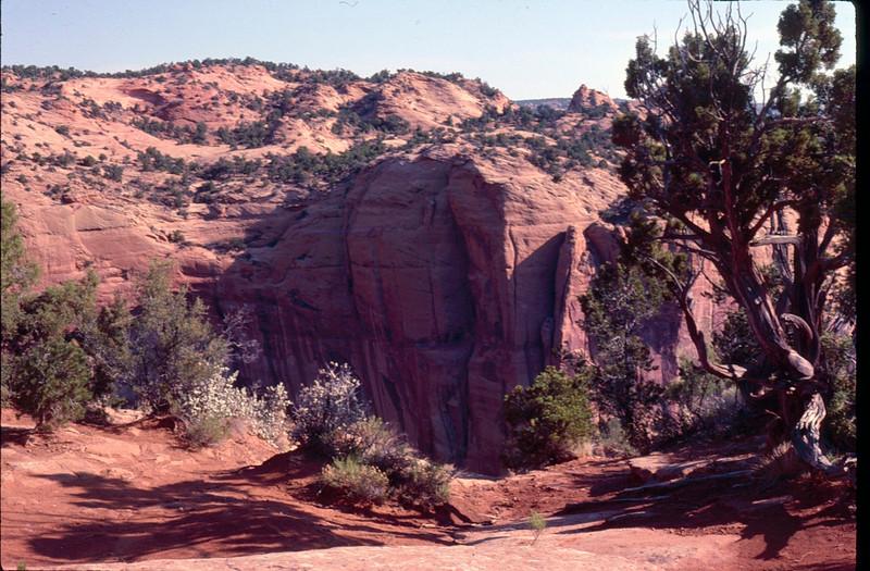 1984 08 desert 6.jpg