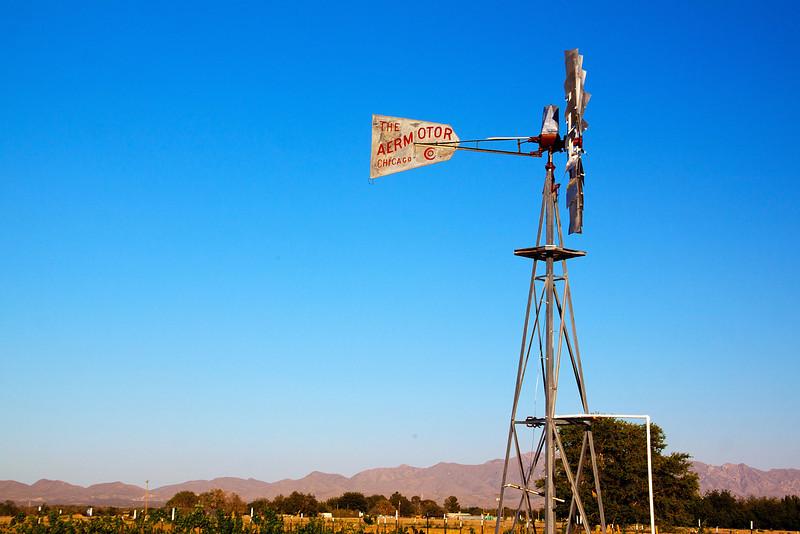IMG_5594 windmill 2.jpg