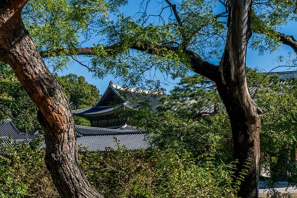 Changdeokgung Palace and Secret Gardens