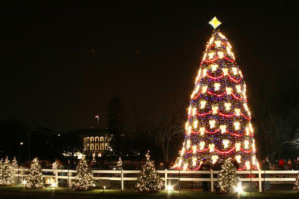 National Christmas Tree - 2007