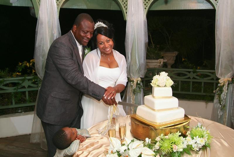 Cake Cutting Couple