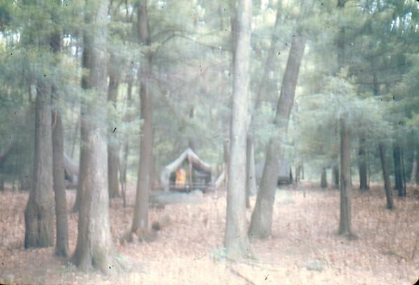 197700018.jpg