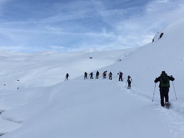 Snowshoe trips!