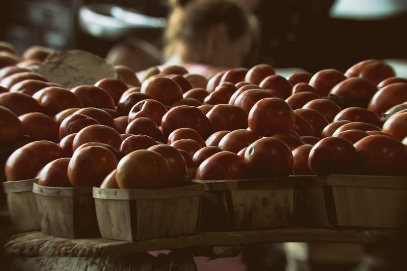 TomatoPull.jpg